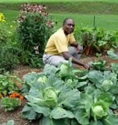 Organic Gardener