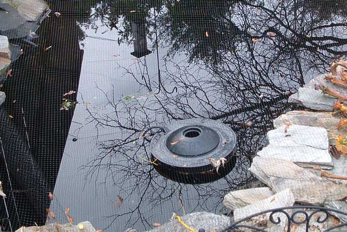 Winter pond care veggie gardening tips for Garden pool heater