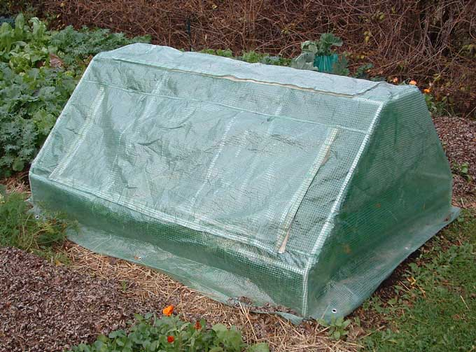 Portable-Cold-Frame.jpg