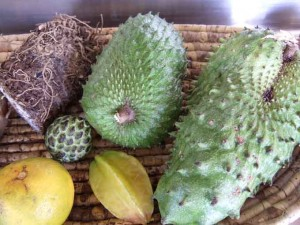 caribbean-fruits