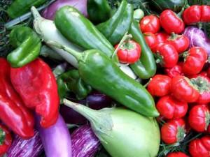 garden produce 300x225 Go Organic to Shrink Your Gardening Budget