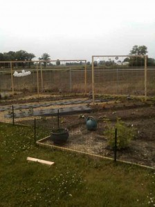 New Veggie Garden 224x300 The Joys of Growing a New Vegetable Garden