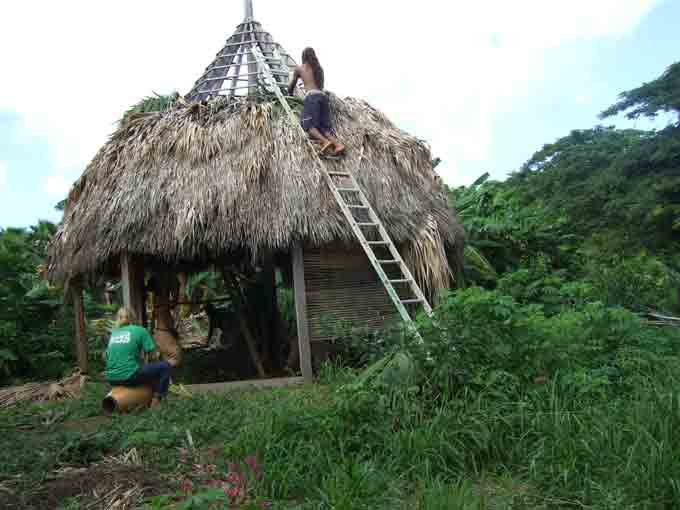 Roof-Thatching