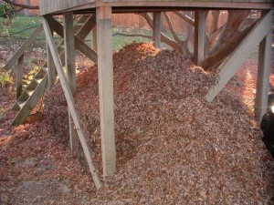 Leaf Pile 300x225 Adopting Growing Zones in the Landscape