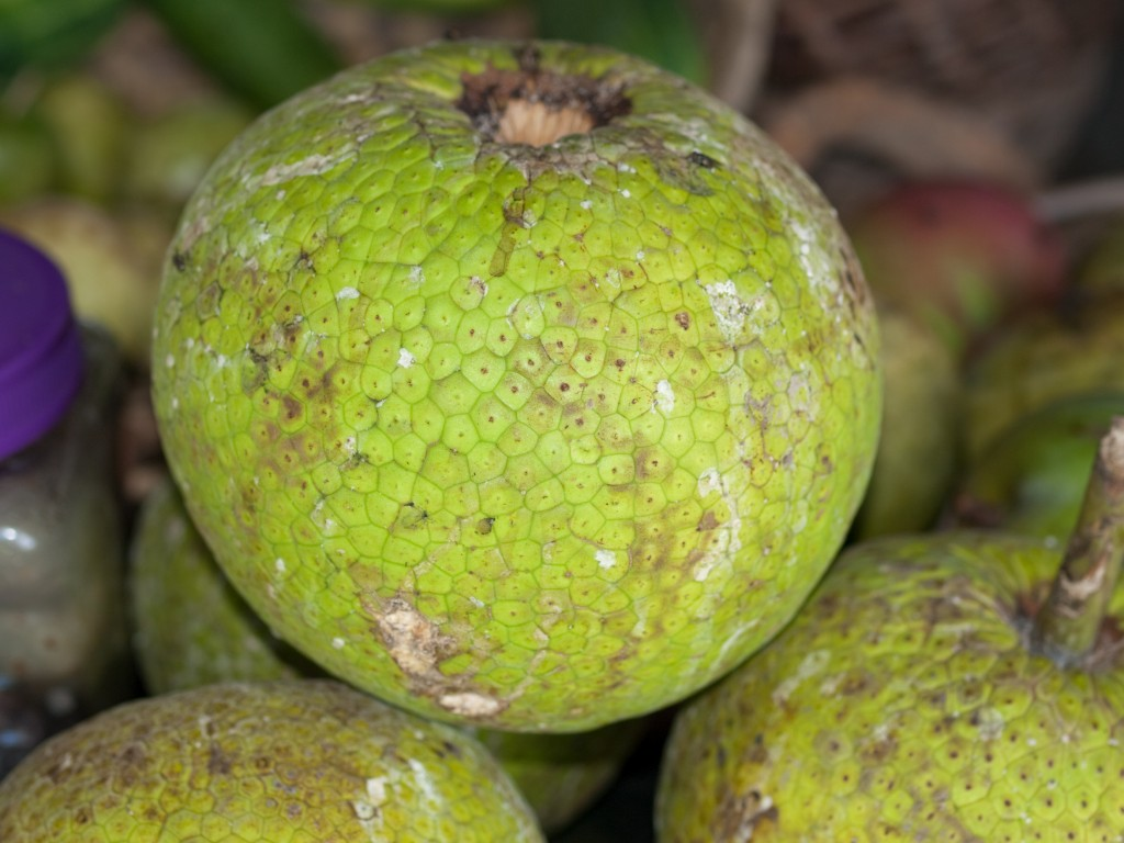 PB211819 1024x768 How Good are You at Identifying Tropical Fruits?