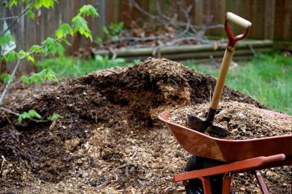 Common Types of Mulch for the Garden Veggie Gardening Tips