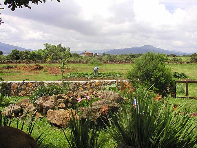 Mexican Garden Landscape Gardening Update from Patzxuaro, Mexico
