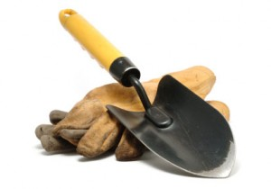 Garden Trowel 300x210 Are New Vegetable Gardeners Throwing in the Trowel?