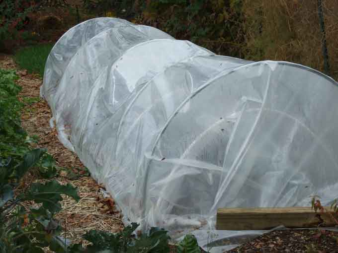 Low Tunnel Blanketing the Garden for a Long Winters Slumber