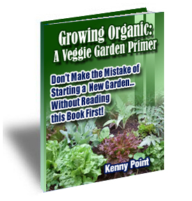 Veggie Garden Primer Cover3 The Veggie Garden Primer eBook