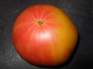 Bi color Heirloom Tomato 300x225 How to Raise a $64 Tomato in Your Backyard