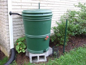 EarthMinded Rain Barrel 300x225 The Earth Minded Way to Conserve Rain Water