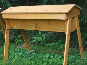 Top Bar Beehive 300x225 Recent Additions to the Vegetable Garden
