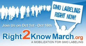 Right 2 Know 300x161 Non GMO Month and the March Toward Labeling Laws