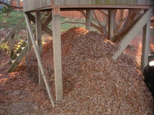 Leafy Compost Pile