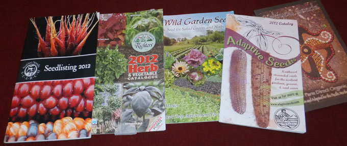 Uncommon Seed Catalogs Seed Varieties for the Gardener Who Has Seen Everything