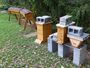 Weighted Beehives
