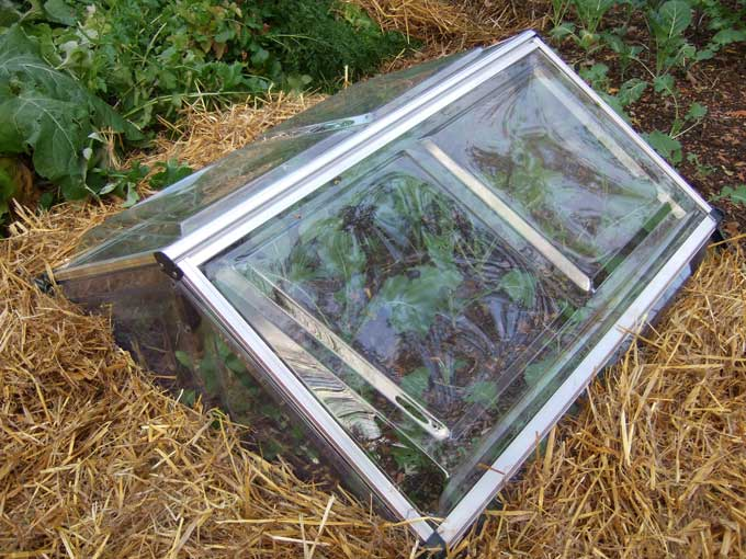 Protective Devices for Fall and Winter Vegetable Gardens Veggie
