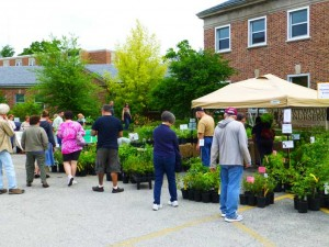 Native Plant Festival 300x225 Perfect Weather for a Weekend in the Vegetable Garden