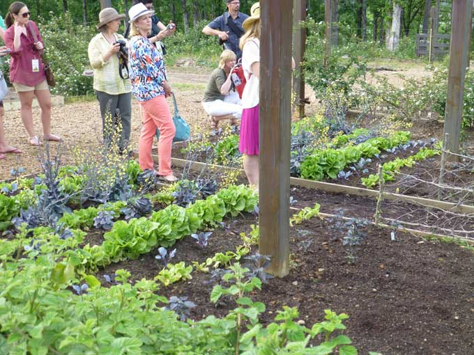 Veggie Garden Moss Mountain Farm and the House that P Allen Smith Built