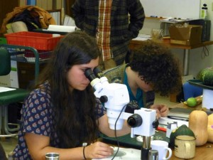 Microscope Work 300x225 Seed School Provides a Very Welcomed Winter Break