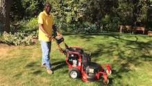 Flex Wide-Area Mower